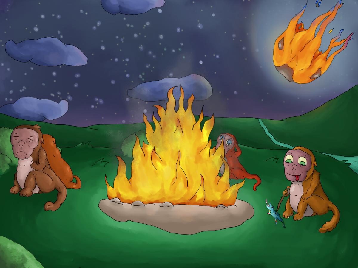 Meteoroid Meets Monkeys