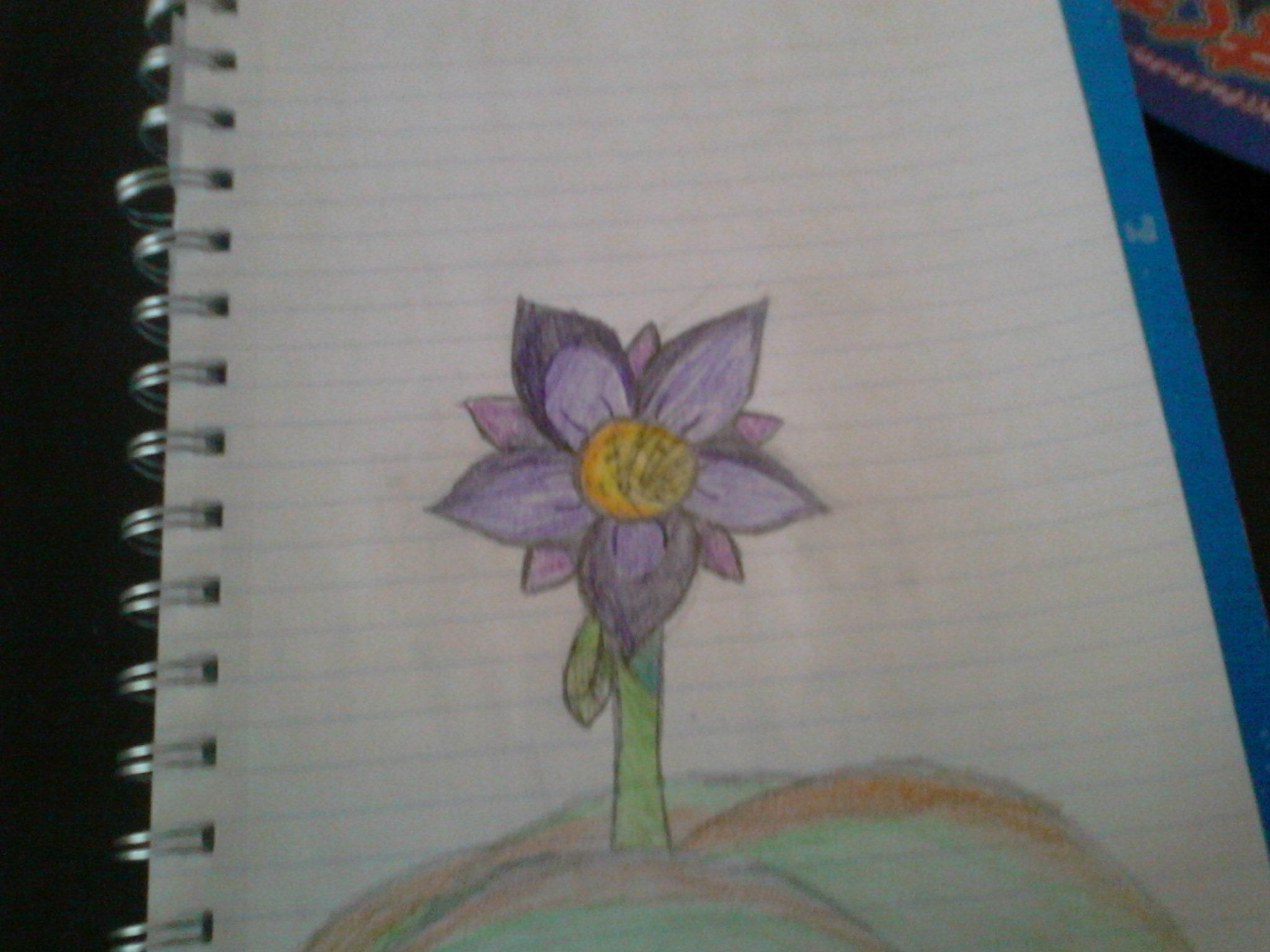 Random Art/Drawings #3