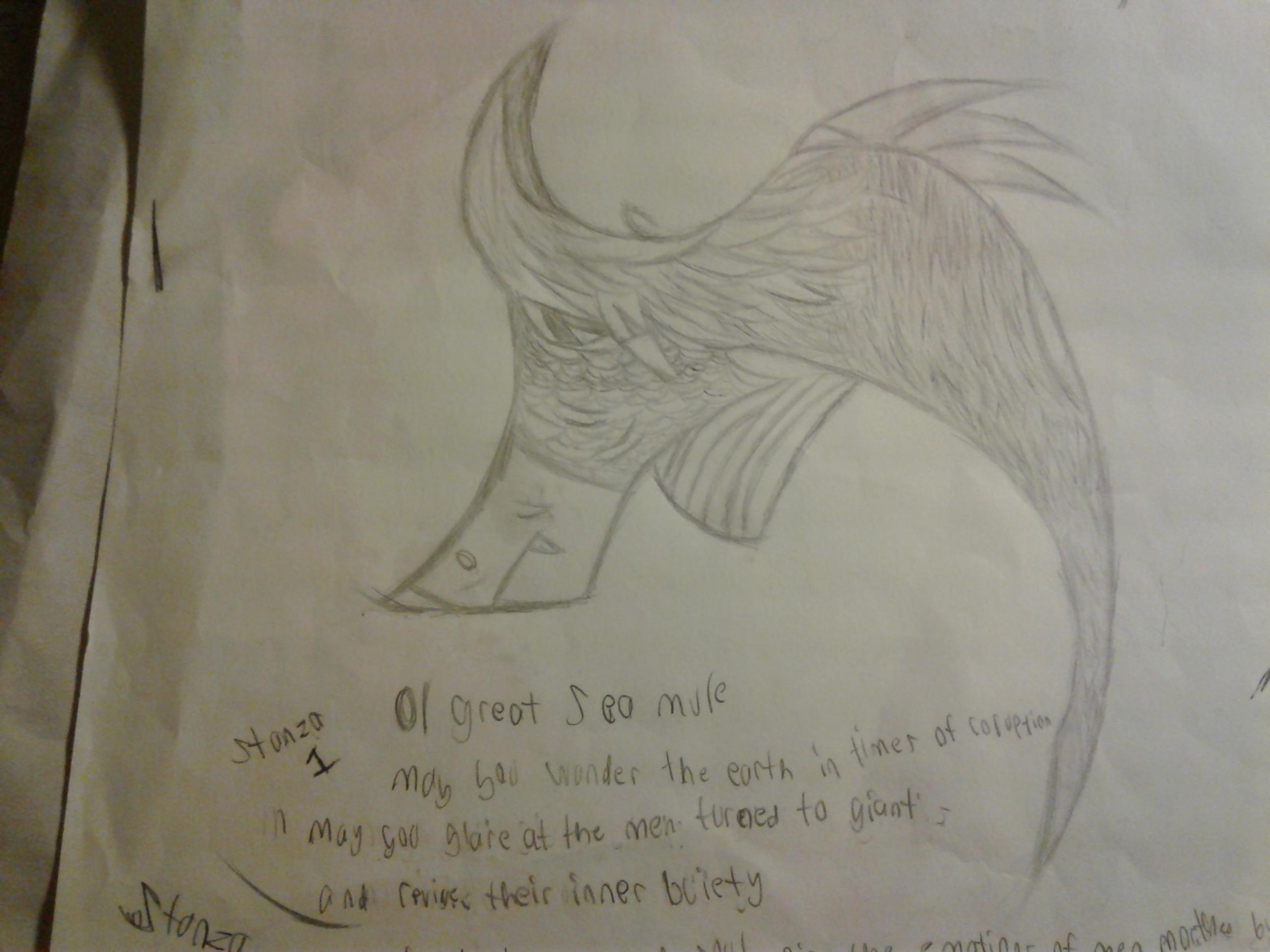 Sea Mule sketch