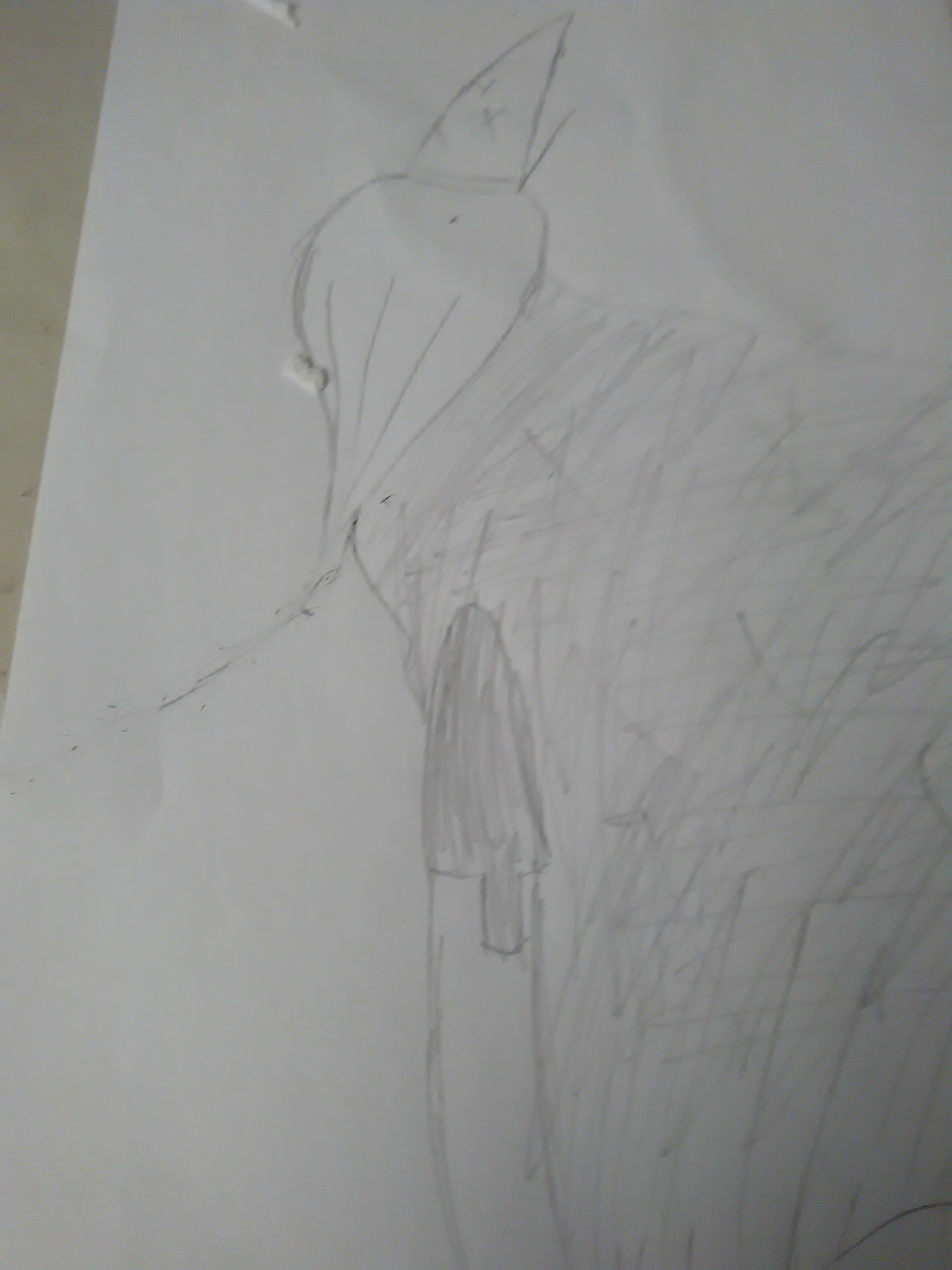 Pen Knight