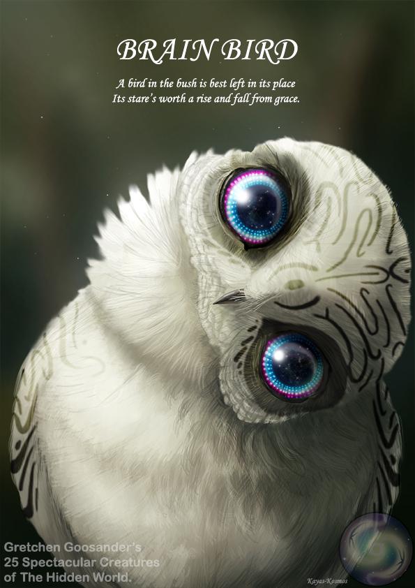Brain Bird