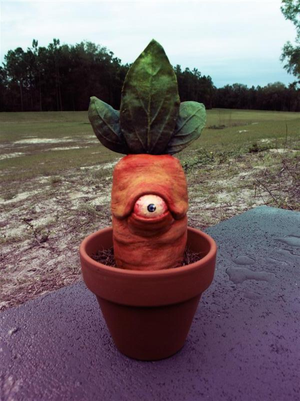 Cyclops Carrot