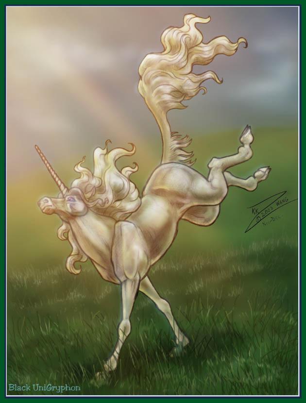 Bounding Unicorn