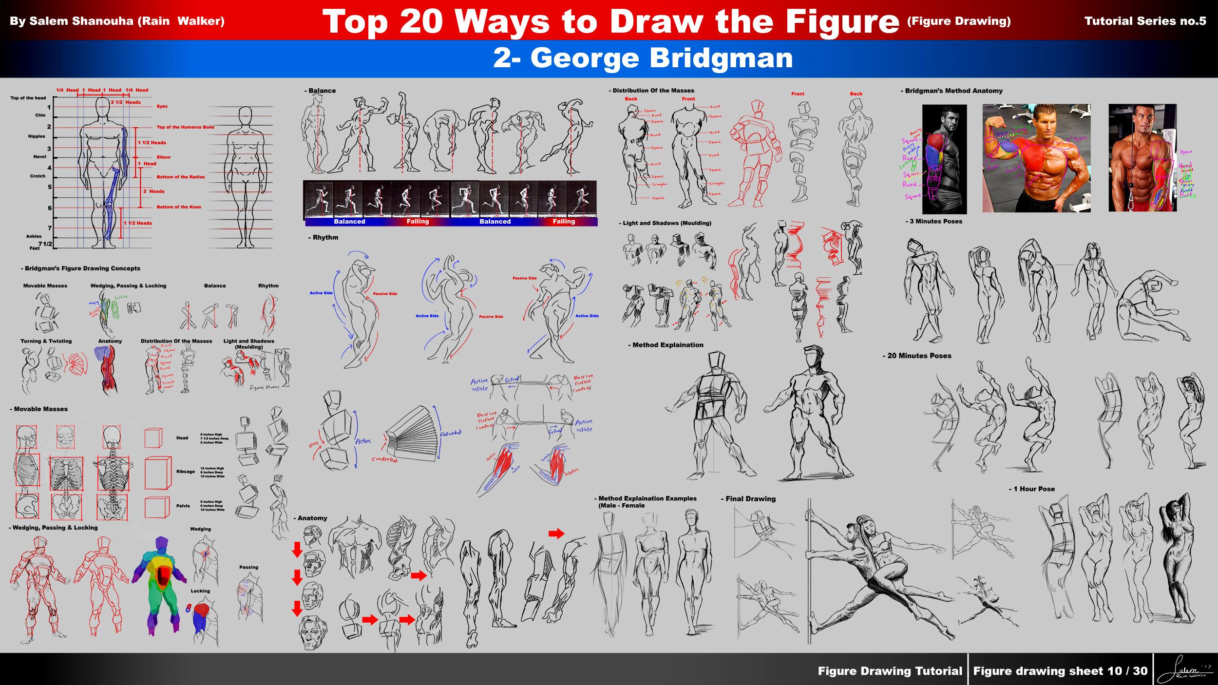 Top 20 Ways to Draw the Figure Chapter 2 (George Bridgman)