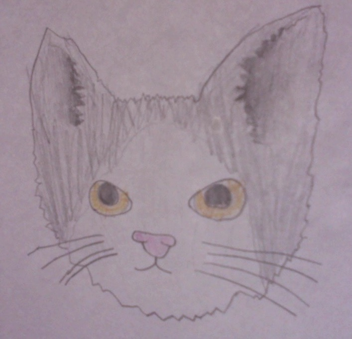 A picture of my cat i drew on my free time during an indoor recess at school!