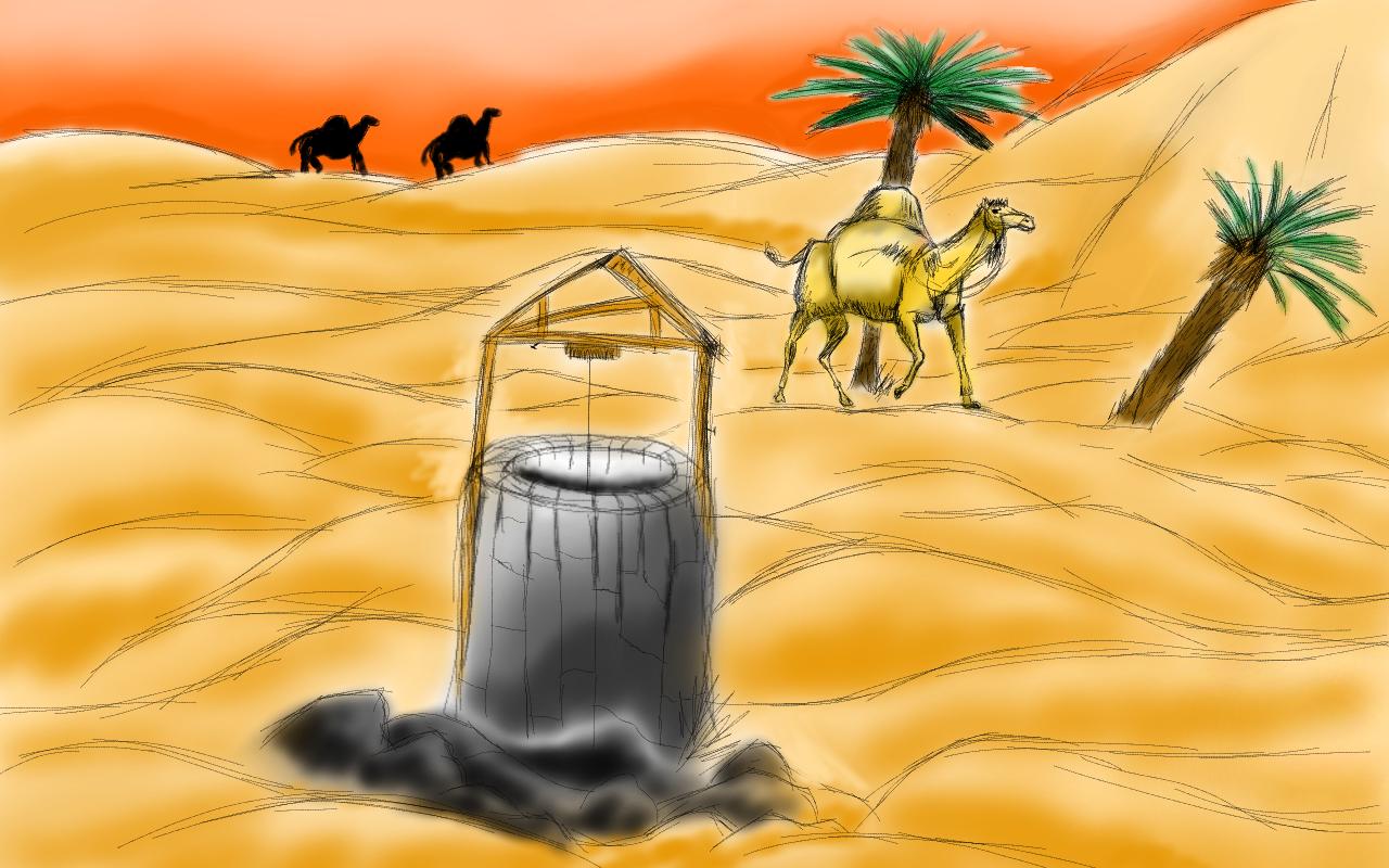 Desert paysage