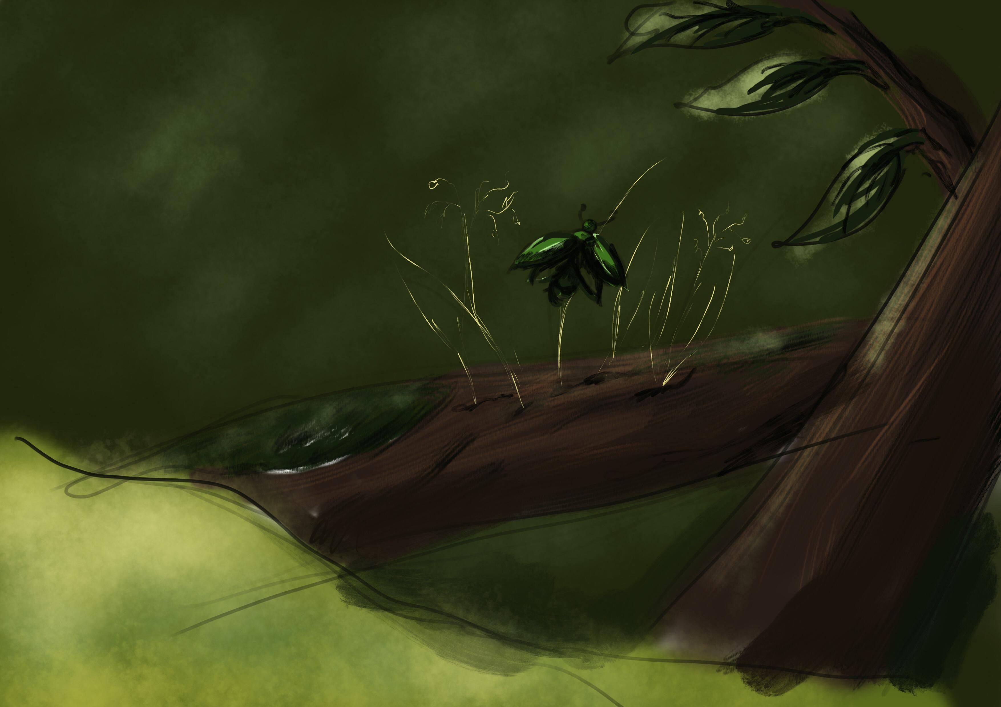 Concept sketch bug