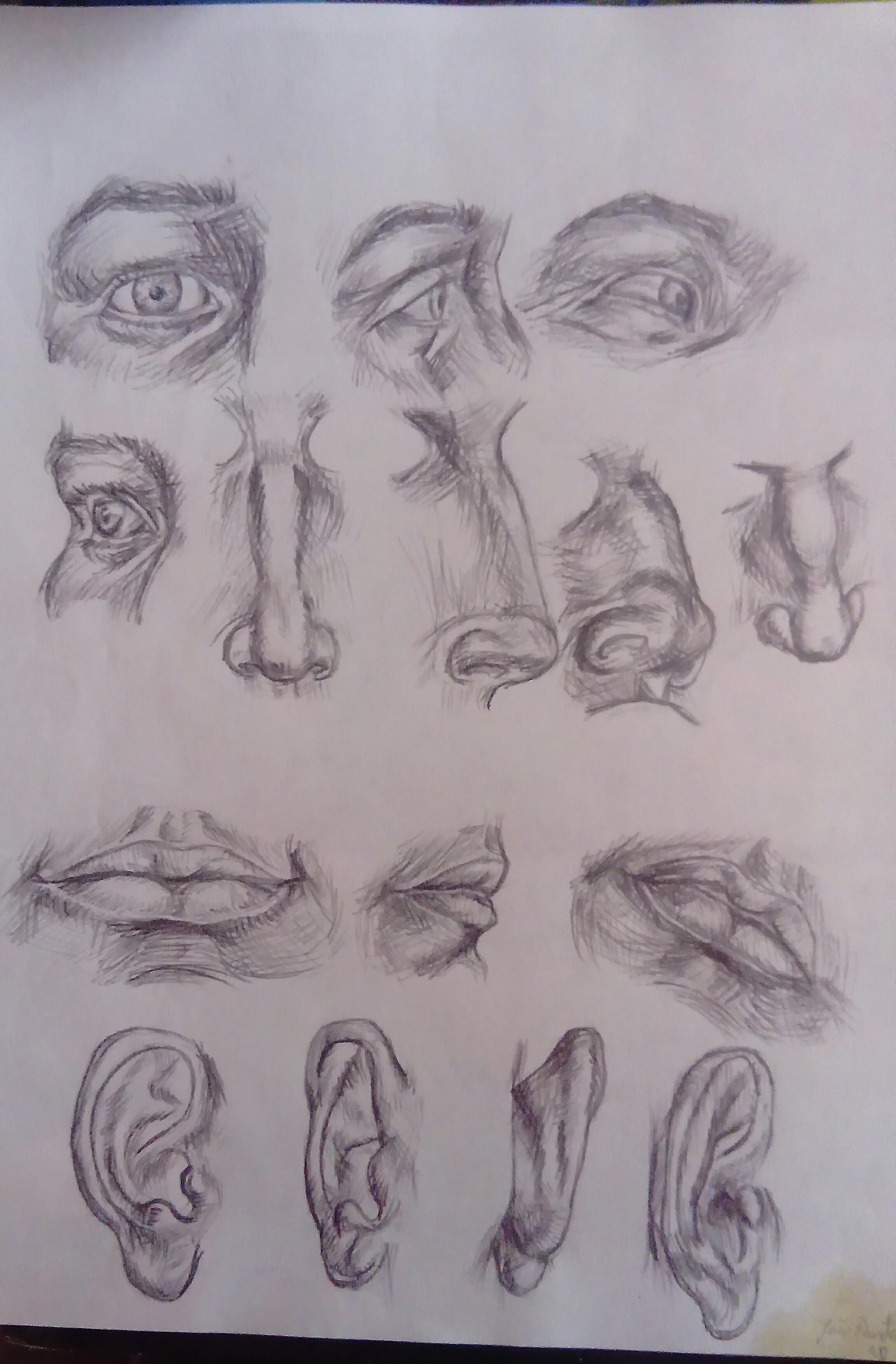 A study of face features