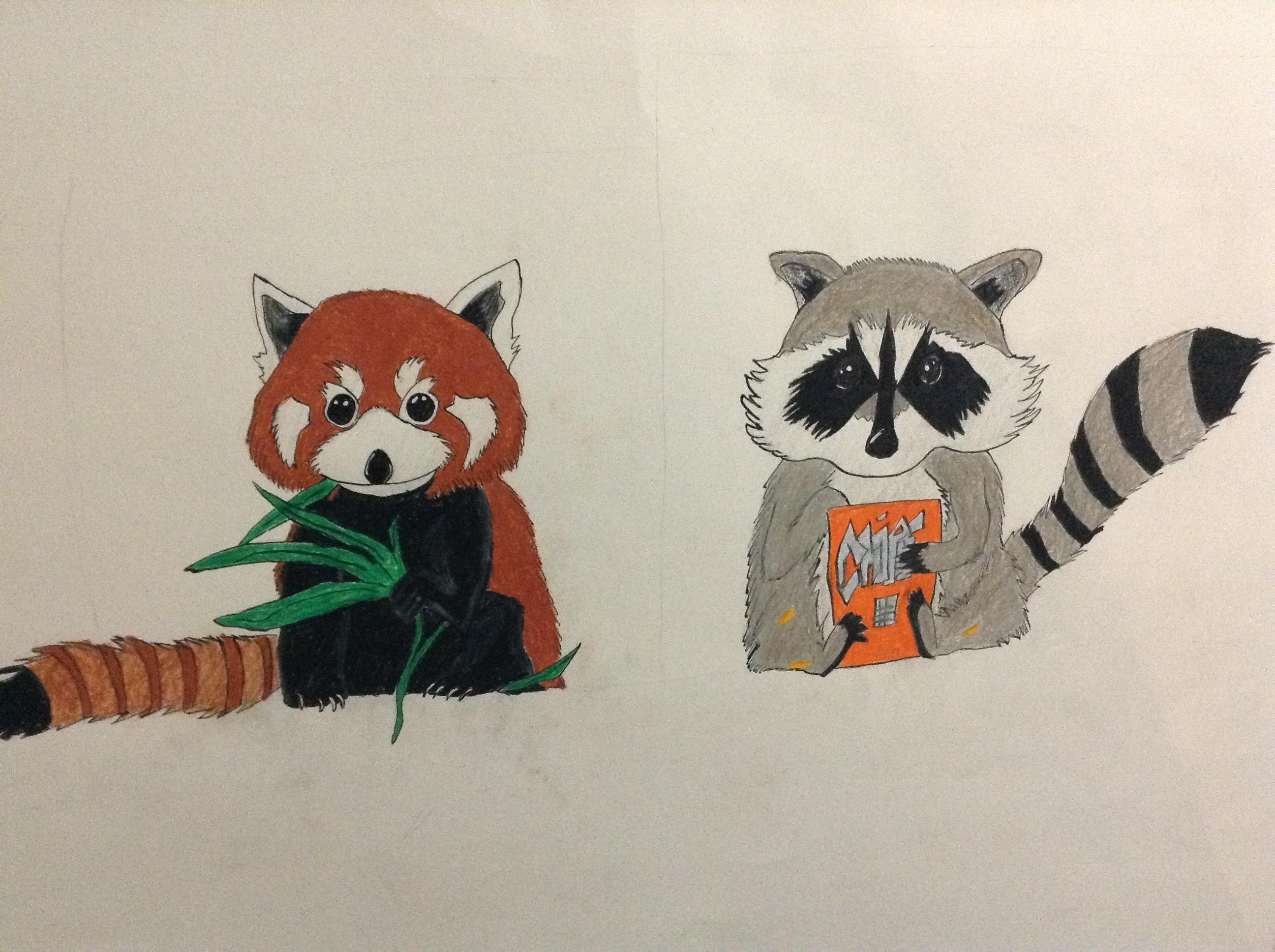 red panda and raccoon