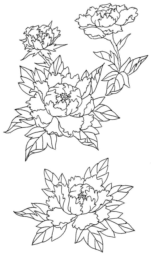 Hochi Flower