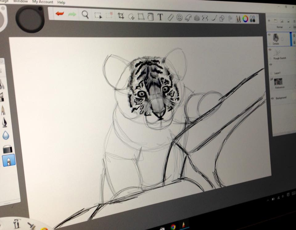 Baby Tiger 2