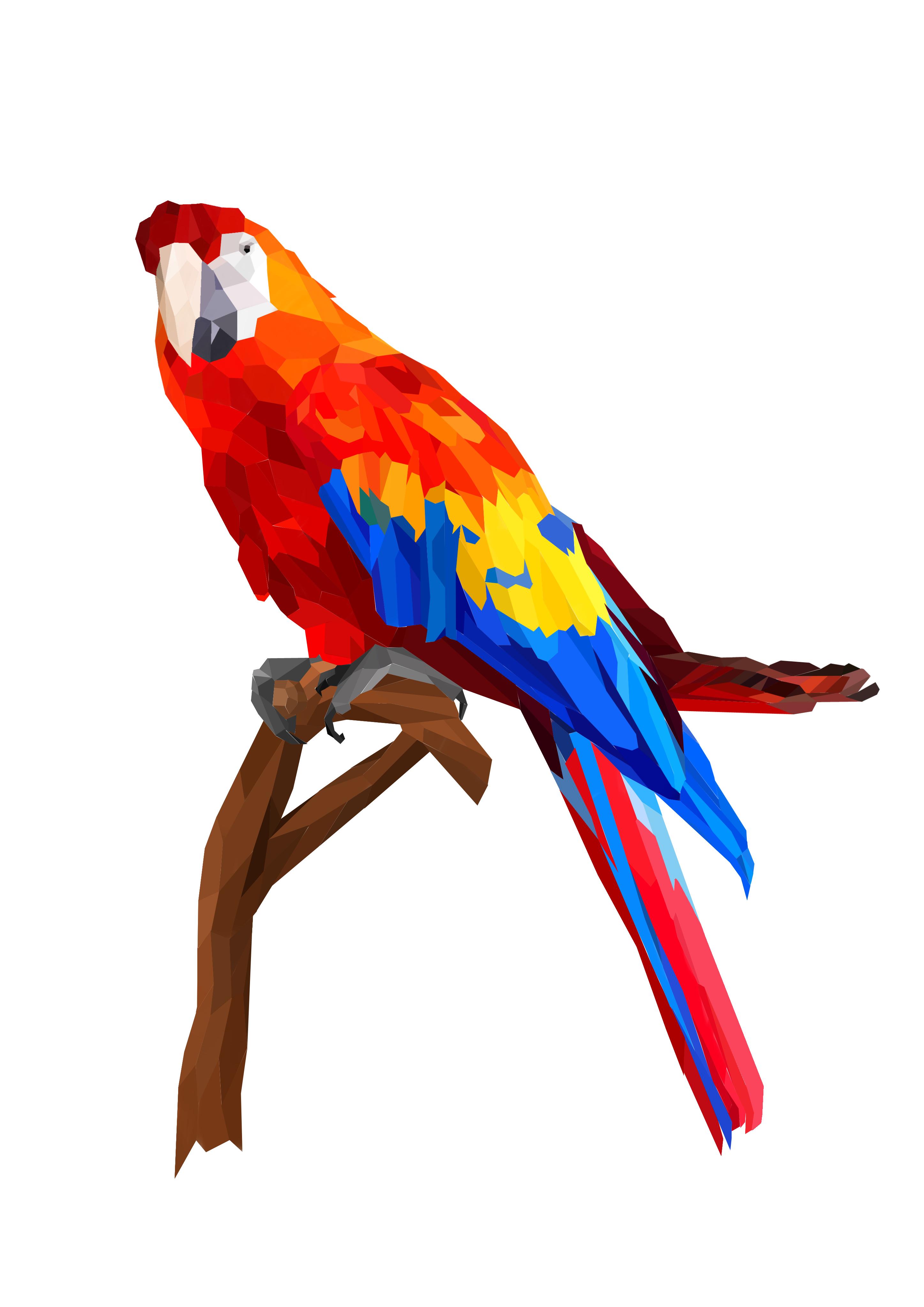 geometric parrot