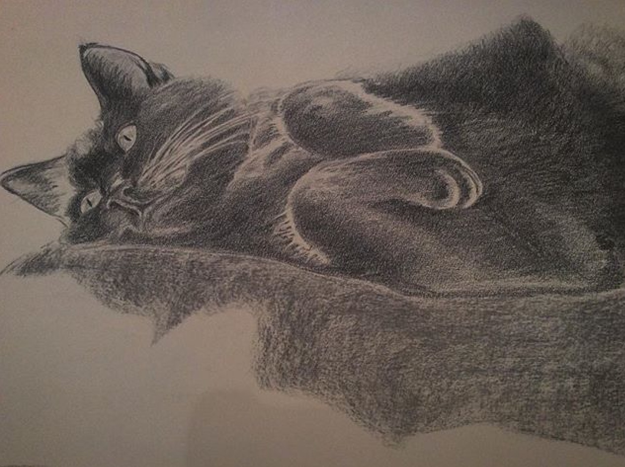 Old drawing Mini the Cat