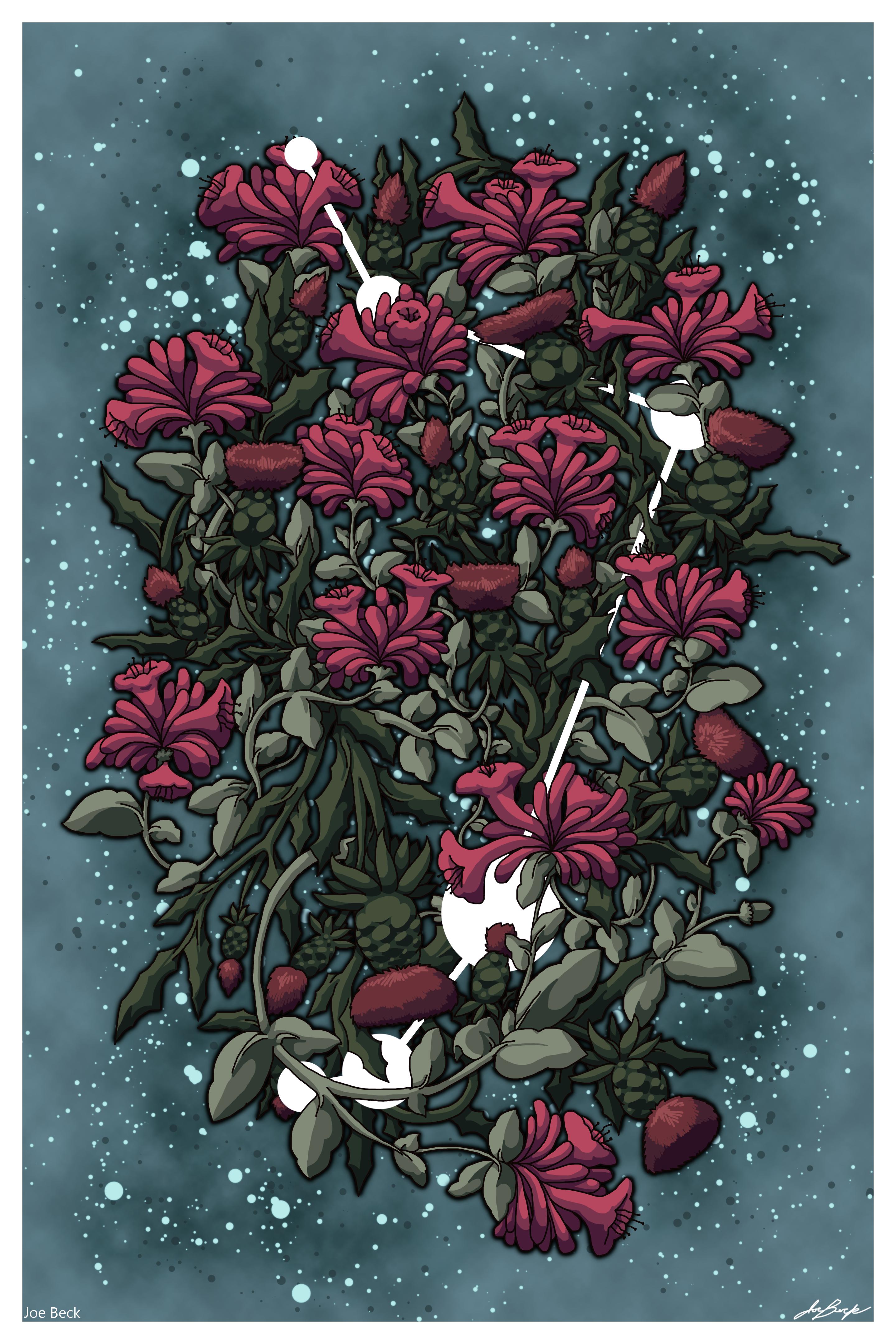 Flowers of Aries