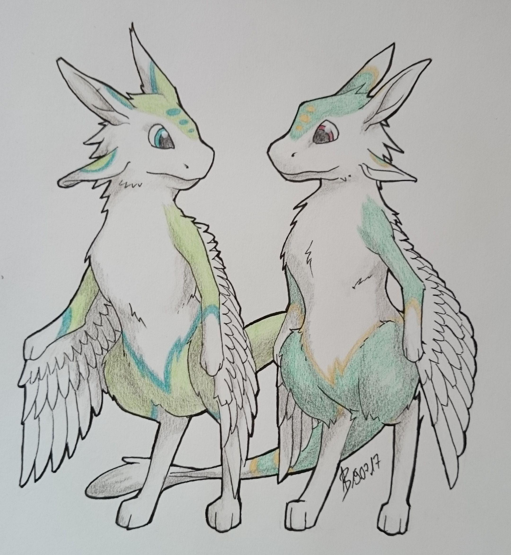 Commission: Avalis