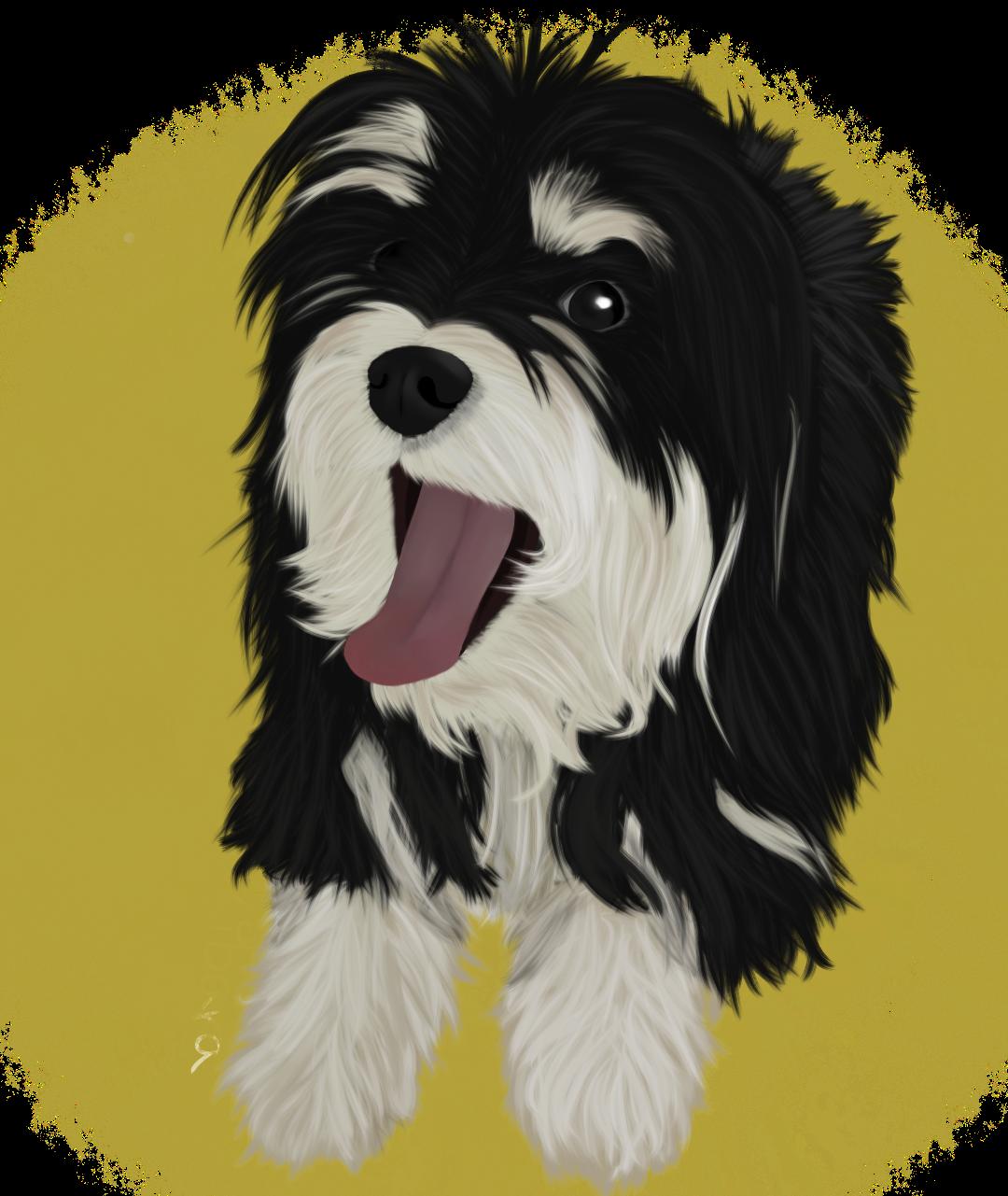 Pet portrait #2