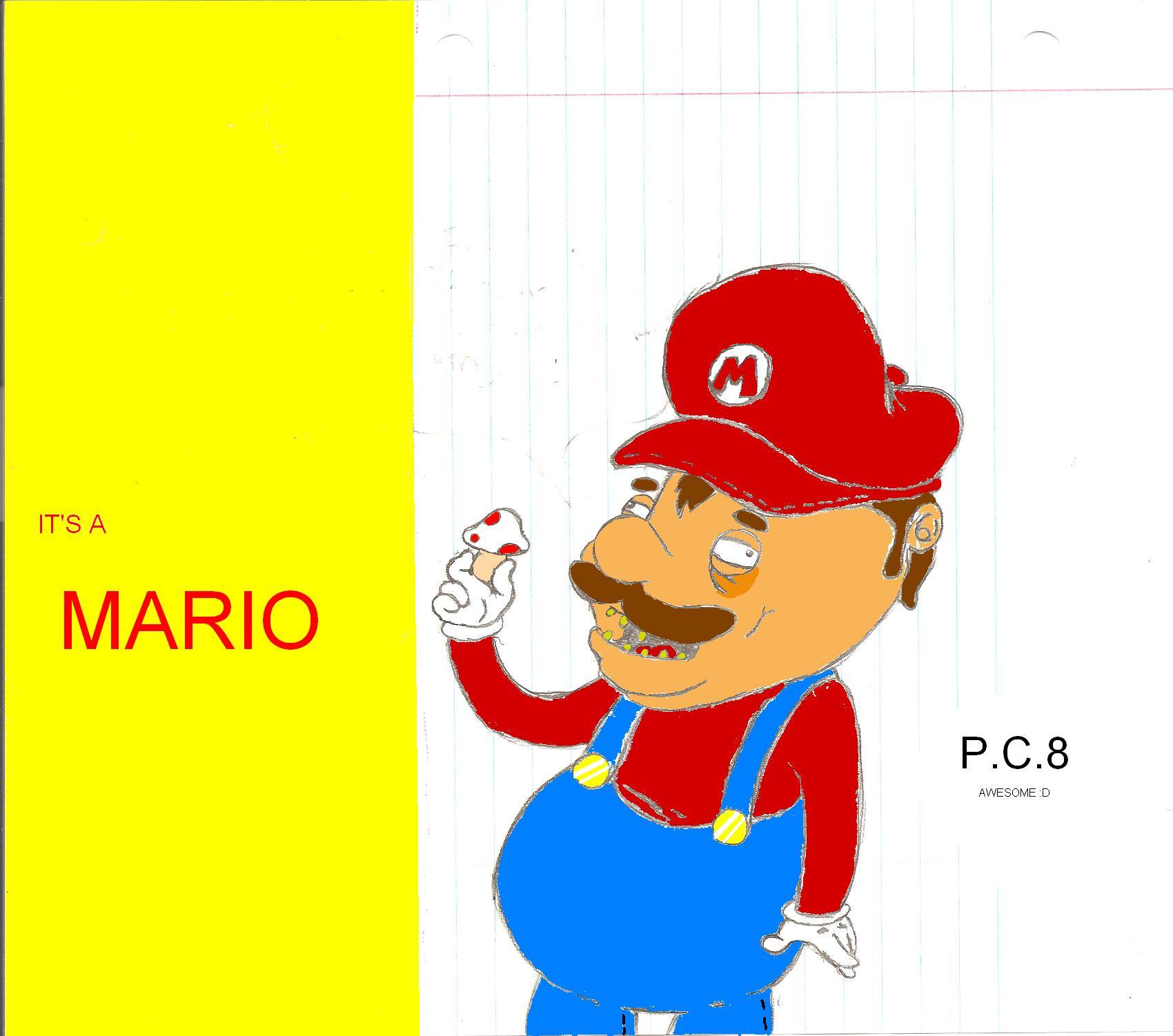 It's A Mario
