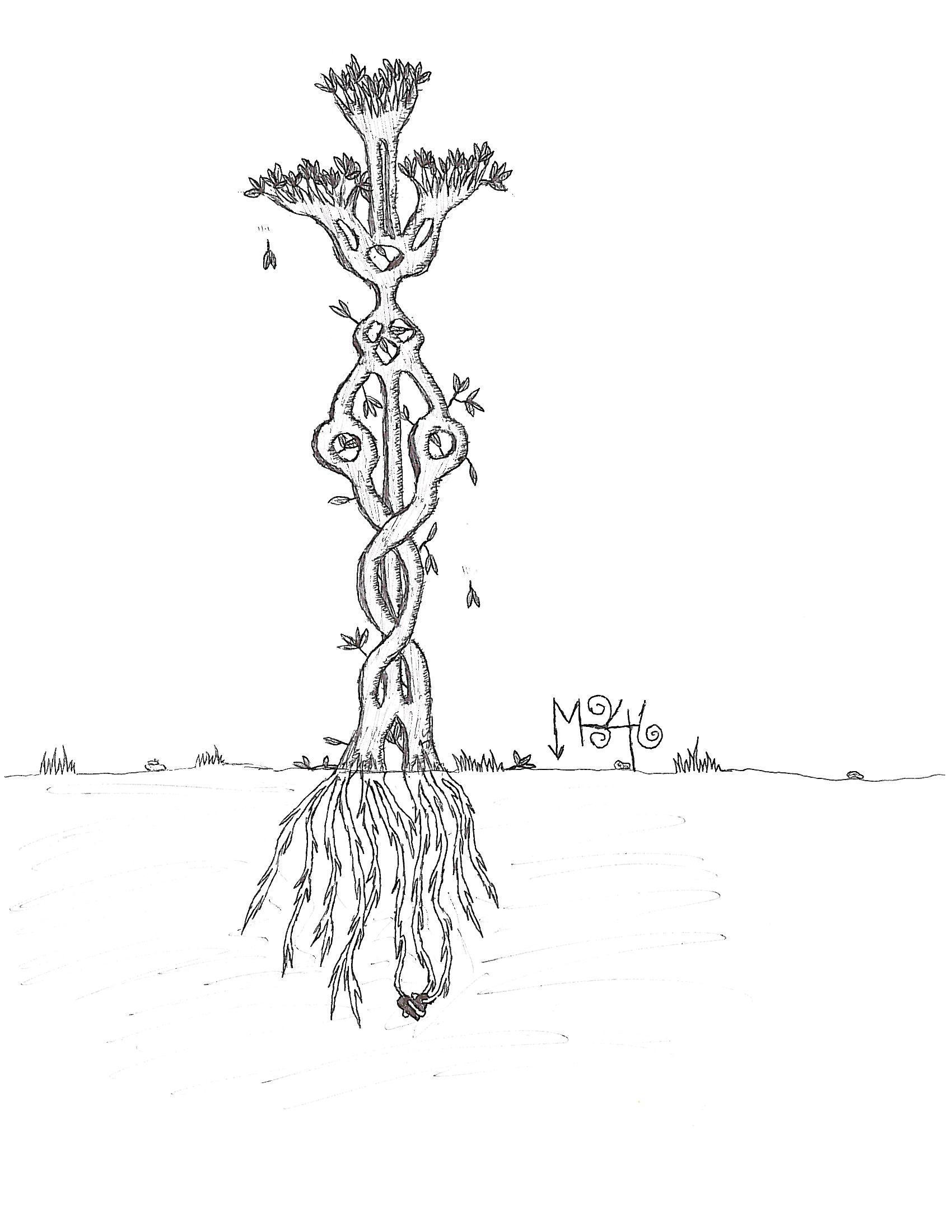 Tree of Sympathy