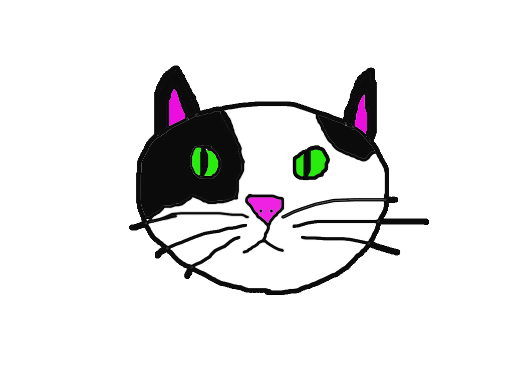 Photoshop Cat Drawing