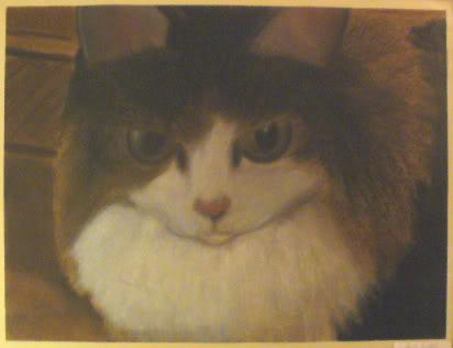 Kittie Kittie