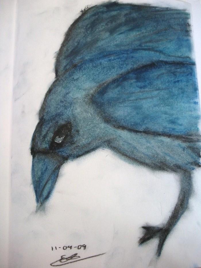 'crow' 11-09-09