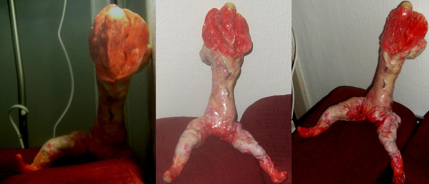 Vaginocephalic Organism