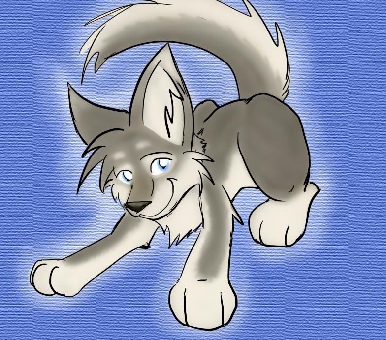 Wolf/Husky pup