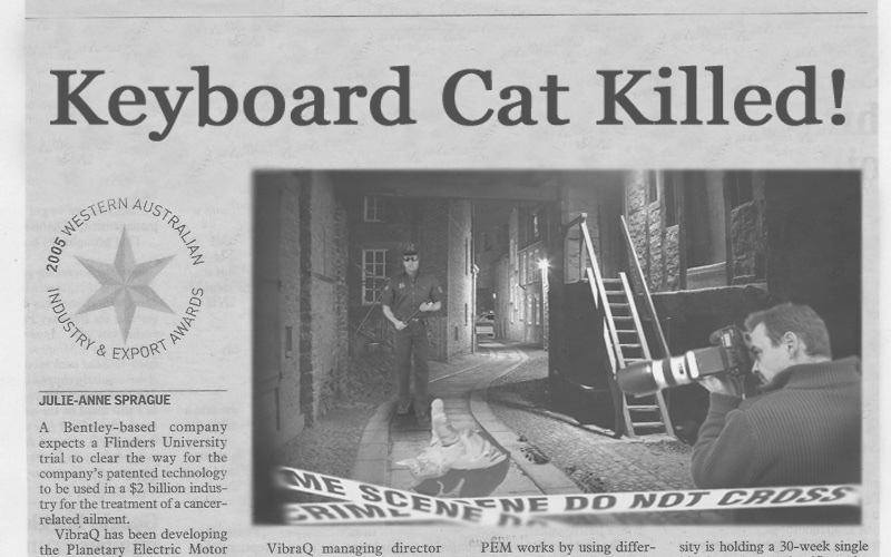 Keyboard Cat Killed!