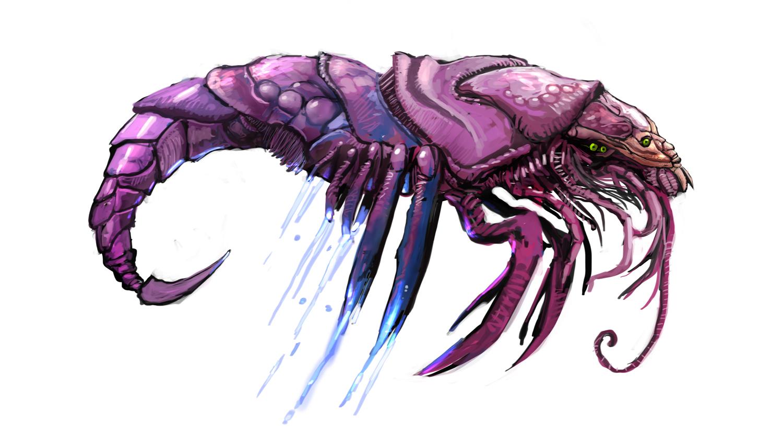 shrimpman
