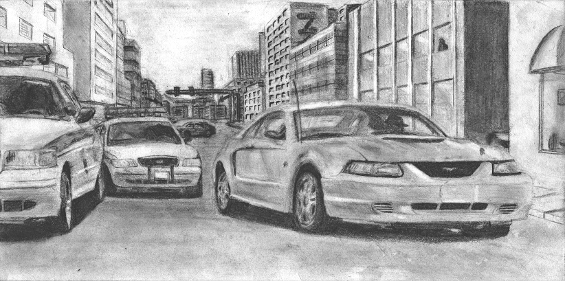 Mustang Chase