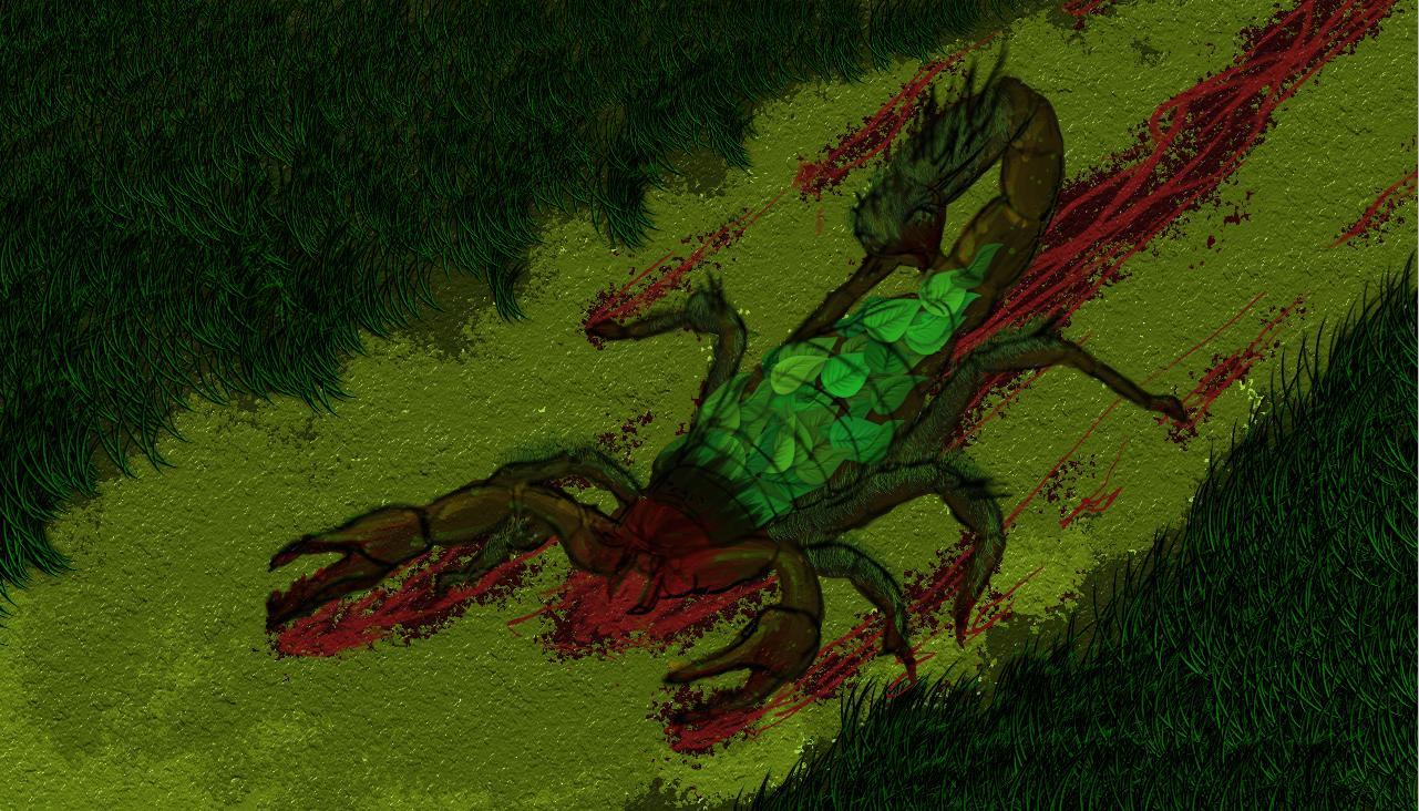 Grass Scorpion
