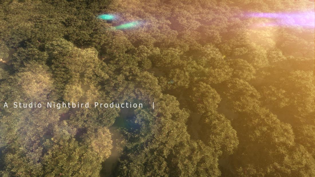 CGI Fly Over