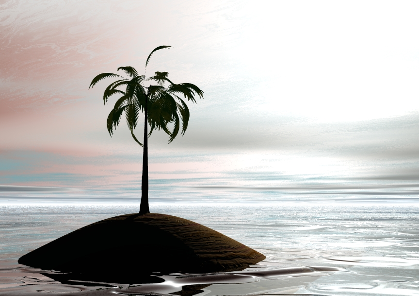 Palm on the sea