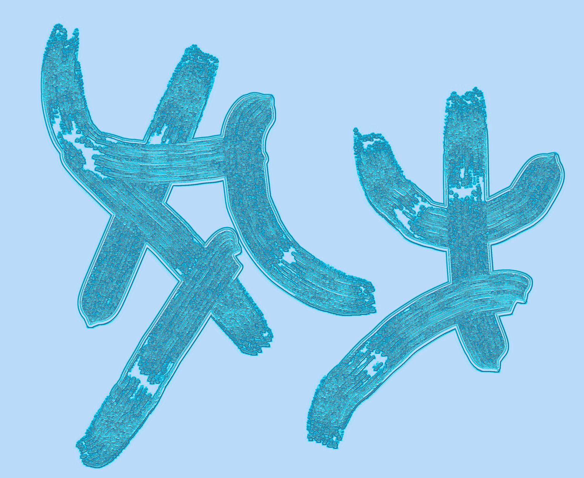 Cold Symbol