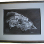 Ram Skull Observational by Rikimaru-Azlar