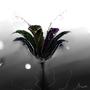 Flower by Nevroff
