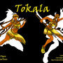 Action Poses-Tokala by VixenRed