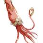 Kraken by GunnMettal