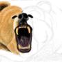 Bear! by Mieshka