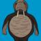 Walrus the Walrus