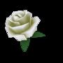 De-Rose-A 2.0 by DeRosa