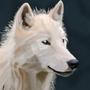 Blue Wolf by Deadartcore