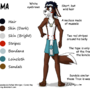 Reference Sheet: Quma by Comic-Ray