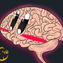 Brains! by Kashi