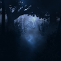 Night Forest Scene by spacepanda