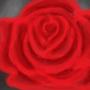 Rose by wert700