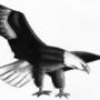 Flight of Freedom by XKFrazierPieCrust