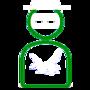 green hornet bbm ghost by cayos666