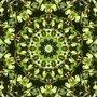 Kaleidoscope by NG-Bartolomeu