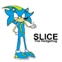 Slice The Hedgehog v0.2 by MountainMusic
